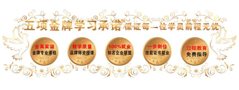 广州整形培训